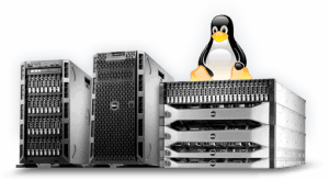 Linux Small Business Server